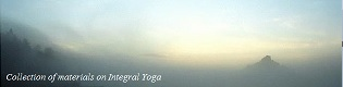 Internet Server for Integral Yoga